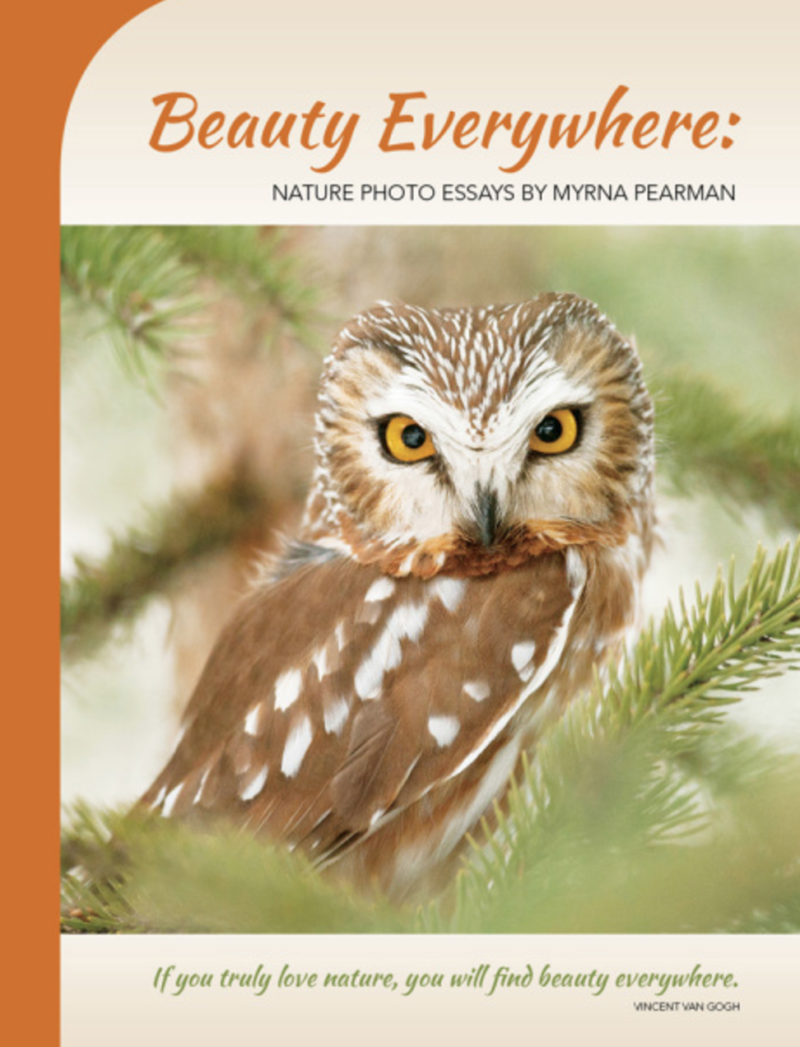 "CBC Homestretch: On Myrna Pearman's newest book, ""Beauty Everywhere"""