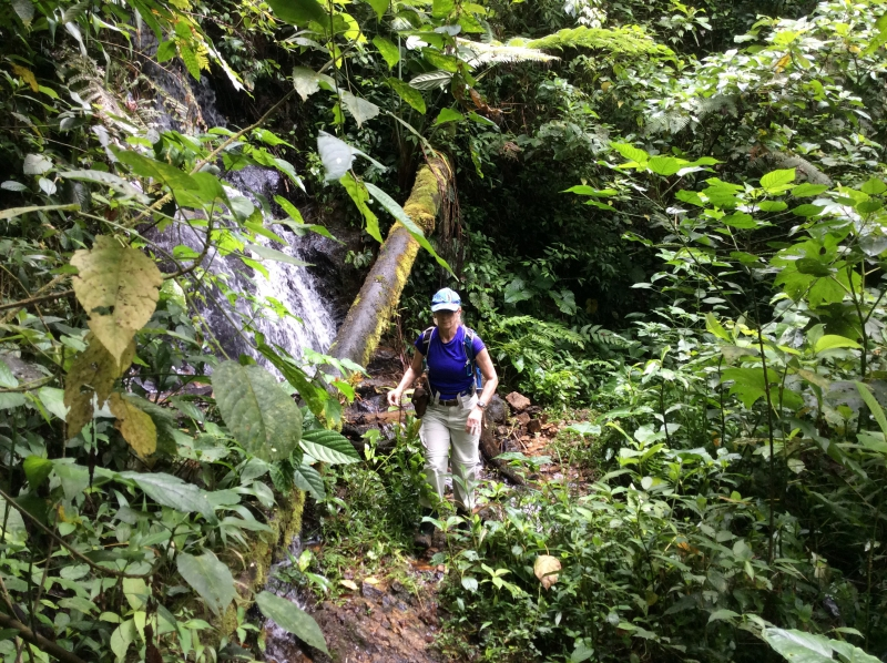 Ecuador | picture of Dee Keating trekking in tinamou territory
