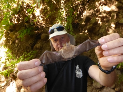 Bats   picture of Bat & Brian in Mexico 2016