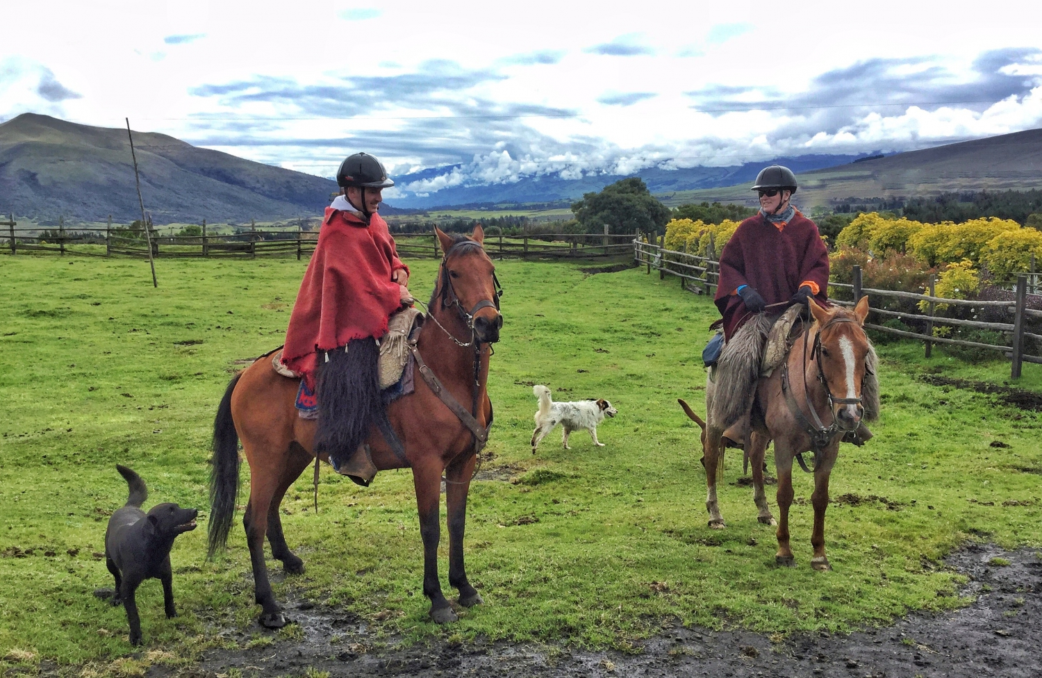 Ecuador | picture of Brian riding horse