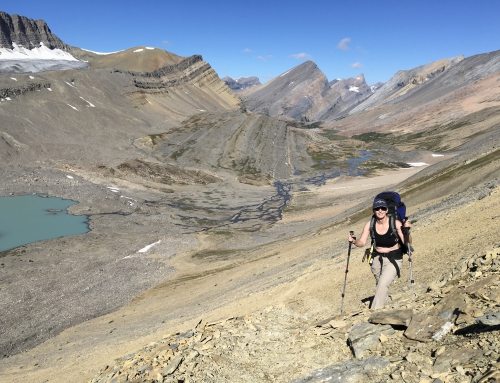 CBC Homestretch: Hiking the Purcell Mountains and the Great Divide Trail in Jasper