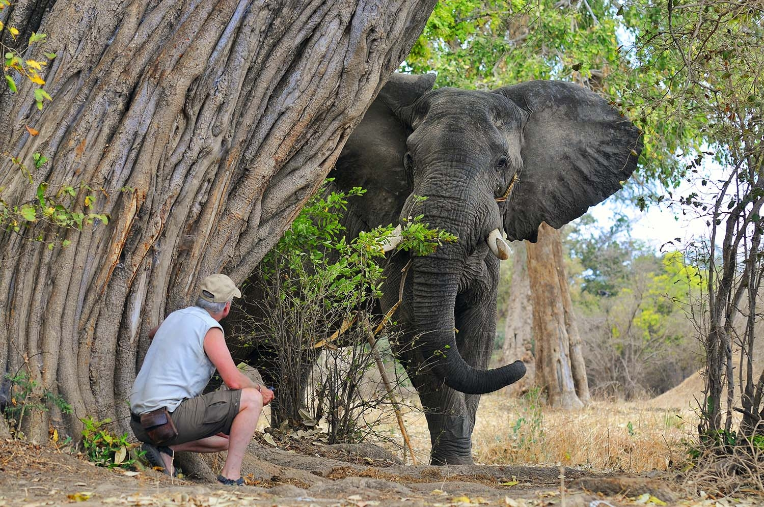Elephant | Picture of Brian with Elephant