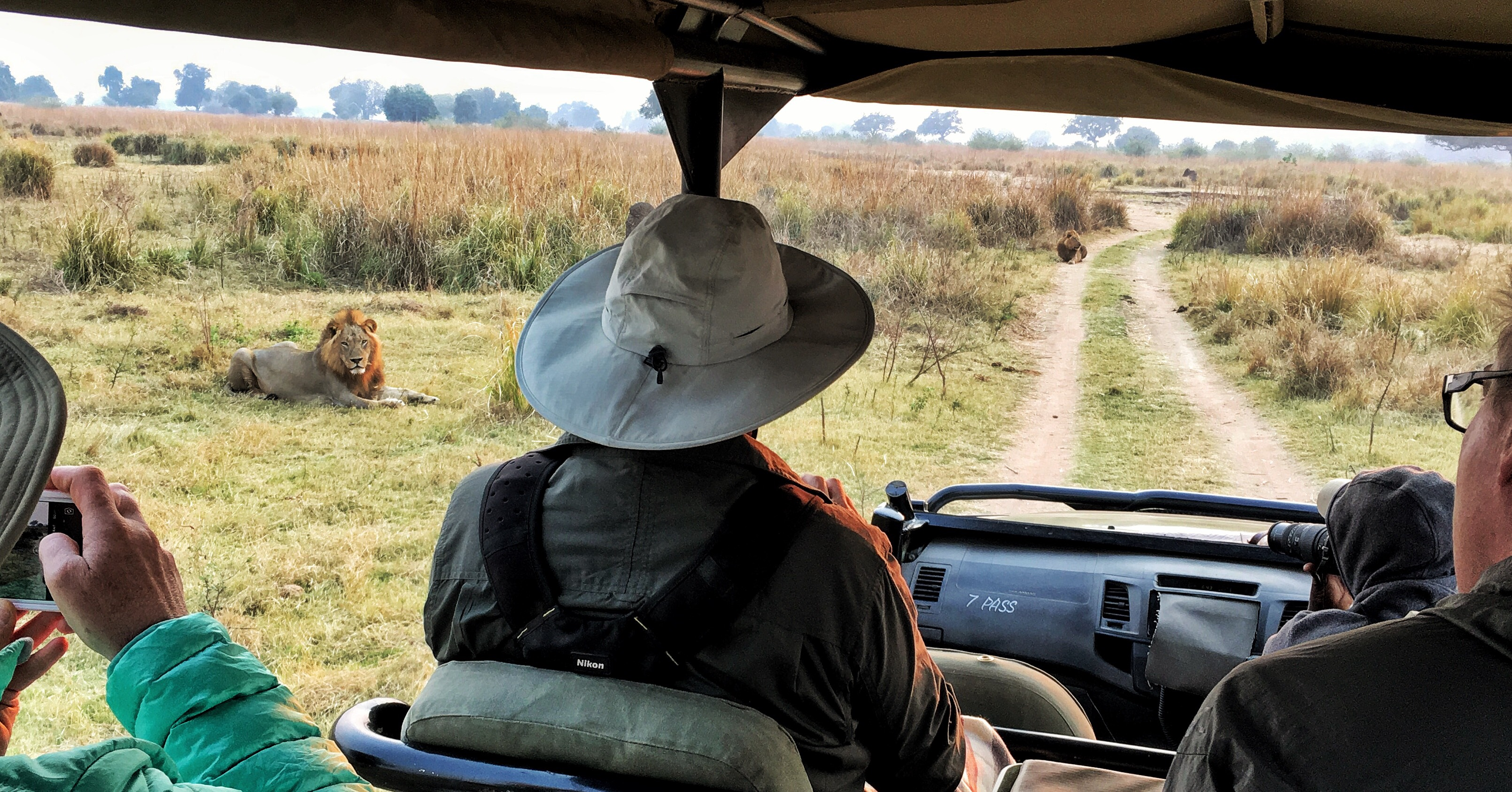 Zimbabwe| 2 of 3-lion coalition