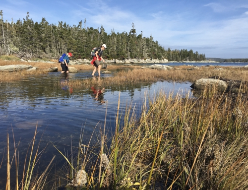 CBC Homestretch: Nova Scotia Nature Trust