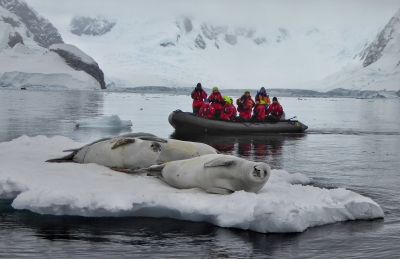 Brian Keating on National Geographic Canada   seal watching