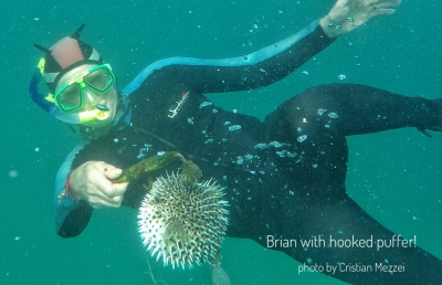Puffer-hooked-in-trouble-with-Brian-Mexico-2017
