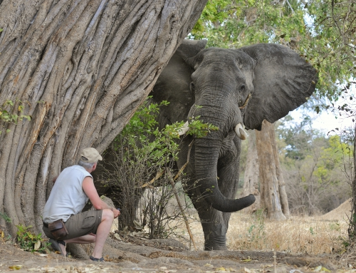 """Attend """"Africa Travel Night"""" on April 25 with Brian Keating"""
