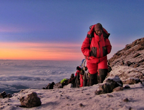 "Watch ""Going Wild on Kilimanjaro"" on Shaw on Sunday, April 8"