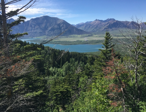 Brian Keating on CBC Homestretch: Waterton Lakes National Park