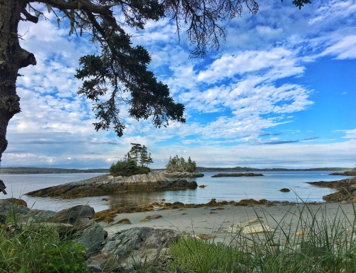 Brian Keating on CBC Homestretch: Exploring Nova Scotia's 100 Wild Islands