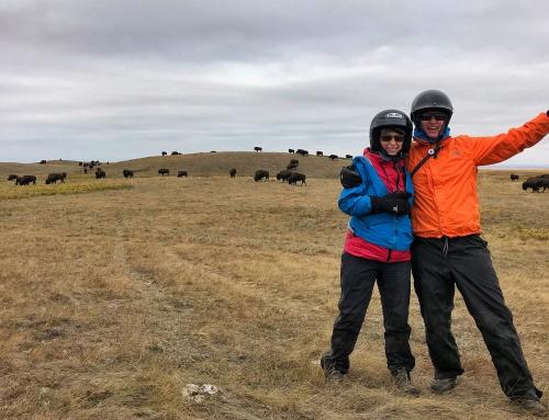 Brian Keating on CBC Homestretch: Buffalo Hills