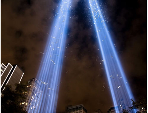 Brian Keating on CBC Homestretch: 9/11 Memorial Causes Problems for Birds